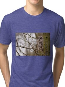 Barred Owl - Presqu'ile Park Tri-blend T-Shirt