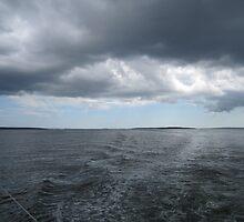 Dark and Clear Skies by prpltrtl8
