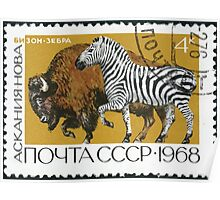 Fauna series The Soviet Union 1968 CPA 3677 stamp American Bison and Zebra Askania Nova cancelled USSR Poster