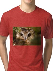 Northern Saw Whet Owl Tri-blend T-Shirt