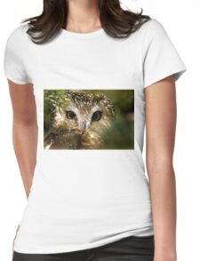 Northern Saw Whet Owl T-Shirt
