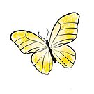 Yellow Butterfly by rmcbuckeye