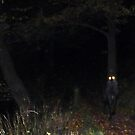 Alien Walking..??!! by Meg Hart