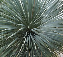 Plant at the Botanical Gardens by Lagoldberg28