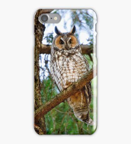 LEO - Long Eared Owl - Ottawa, Ontario iPhone Case/Skin