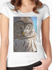 Barred Owl in Tree - Brighton, Ontario Women's Fitted Scoop T-Shirt