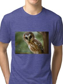 Northern Saw Whet Owl On Branch Tri-blend T-Shirt