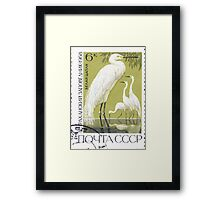 Fauna series The Soviet Union 1968 CPA 3675 stamp Great White Egrets Astrakhan Nature Reserve cancelled light USSR Framed Print
