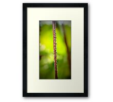 Spike Green Framed Print