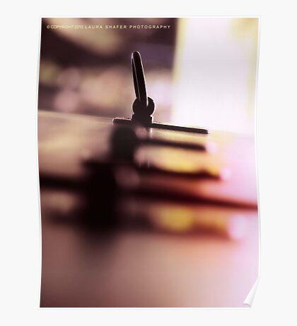 LANGUID LAVENDER PANTONE #D6CADD Poster