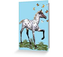 The Foal and the Butterflies Greeting Card
