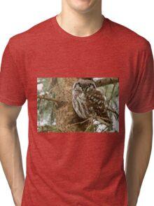 Boreal Owl Tri-blend T-Shirt