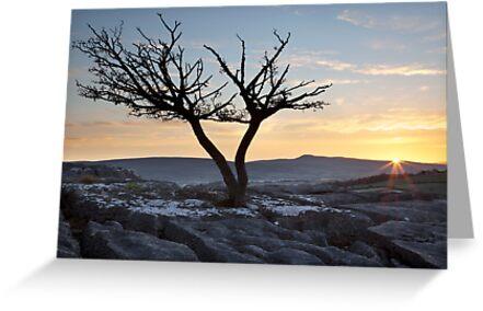 Ingleborough Sunrise From Hutton Roof by SteveMG