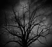 Evil lurks in twilight, dances in the dark..Black will not become a white...A rumble of thunder, I'm suddenly under your spell..The darkened deliver, I shake and I shiver down your soul by jammingene