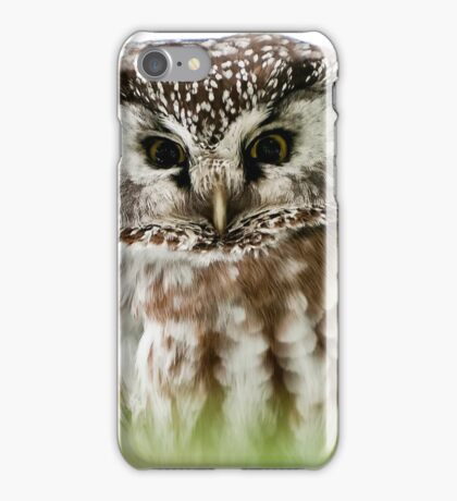 Boreal Owl iPhone Case/Skin