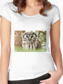 Boreal Owl Women's Fitted Scoop T-Shirt
