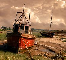 High and Dry by Tarrby