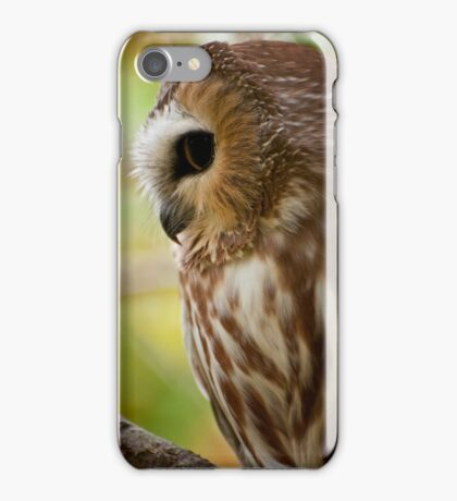 Northern Saw Whet Owl iPhone Case/Skin