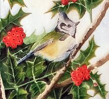 Great Crested Tit on Holly in Winter by Jorja