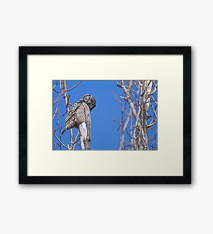 Nope you don't look any better this way Framed Print