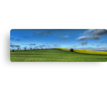 Green and Gold, Canowindra Pastures Panorama Canvas Print