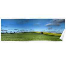 Green and Gold, Canowindra Pastures Panorama Poster