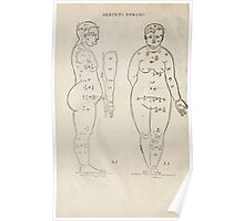 Famous Painter Parts Human Body Symmetry Four Books Geomety 1557 Albrecht Durer 0020 Female Front Side Poster