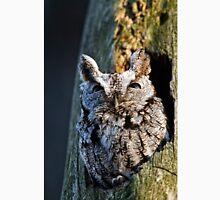 Screech Owl - Ottawa, Ontario Unisex T-Shirt