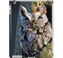 Screech Owl - Ottawa, Ontario iPad Case/Skin