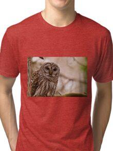 Barred Owl - Presqu'ile Provincial Park  Tri-blend T-Shirt