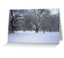 Snowy park scene Greeting Card