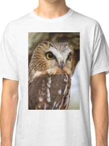 Saw Whet Owl - Amherst Island, Ontario Classic T-Shirt