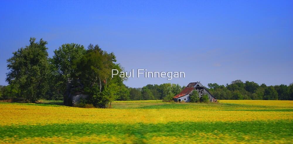 Kentucky Roadside by Paul Finnegan
