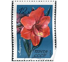 Tropical and subtropical plants Soviet Union stamp series 1971 CPA 4083 stamp Amaryllis cancelled  USSR Poster