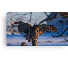 Great Gray Owl on Post - Dunrobin Ontario Canvas Print