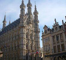 Townhall of Leuven (Belgium) by Anita57