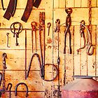 Tools of the Trade - A Country Fair by Sarah Beard Buckley