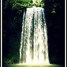 Millaa Millaa Falls - FNQ - Australia by Vanessa Barklay