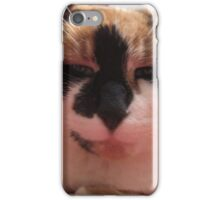 Dr. Kitty is listening iPhone Case/Skin