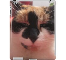 Dr. Kitty is listening iPad Case/Skin