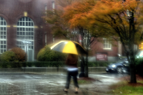 Walking in the Rain by Monica M. Scanlan