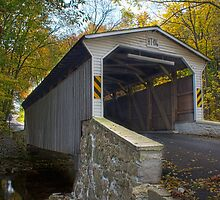 Glen Hope Covered Bridge (1889) - Looking South by Andrew Seymour