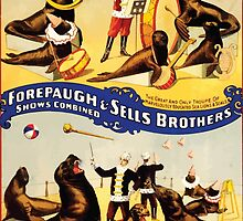 Poster 1890s Marvelously trained sea lions & seals poster for Forepaugh & Sells Brothers 1899 by wetdryvac