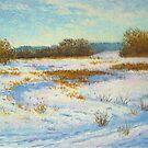 Creek in winter by Julia Lesnichy