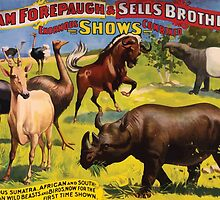 Poster 1890s Wondrous Wild Beasts poster for Forepaugh & Sells Brothers 1896 by wetdryvac