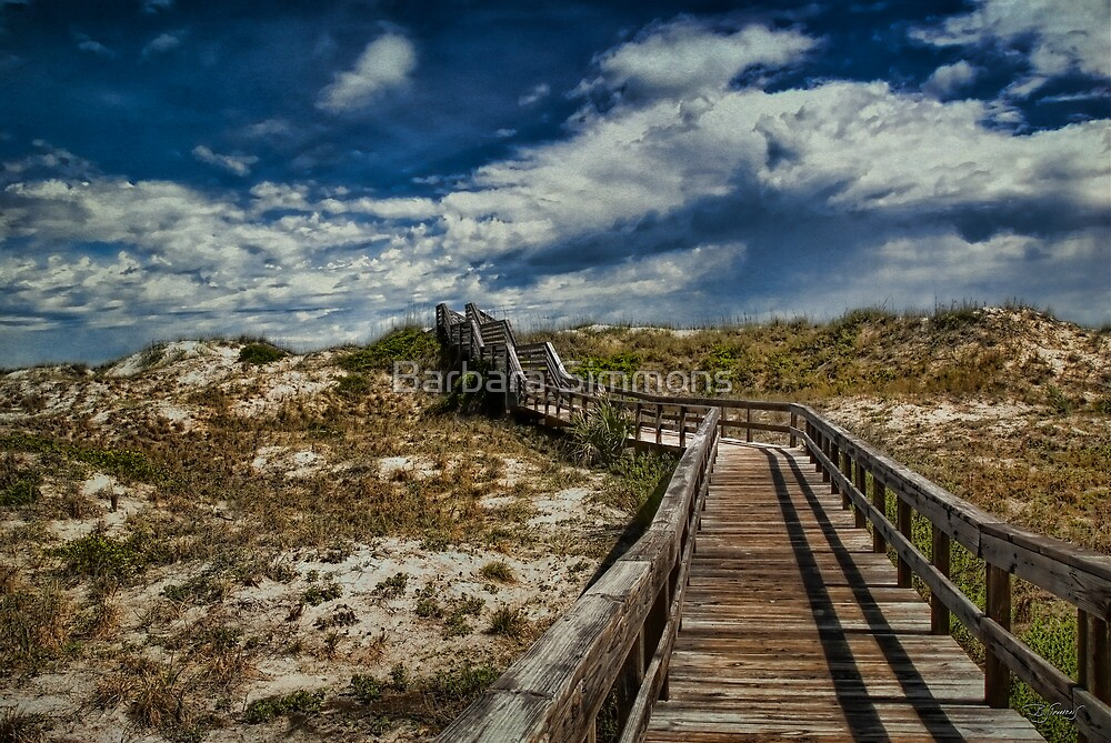 To The Beach by Barbara Simmons