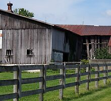 OLD WEATHERED EQUESTRIAN BARN by pjm286