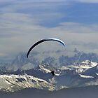 free like the wind by poupoune