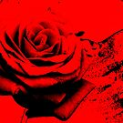 Rose red.......... did it leave my soul to bleed by vesa50