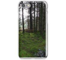 Irish Countryside  iPhone Case/Skin